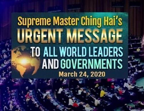 Spiritual Leader Supreme Master Ching Hai's Message on Importance of Veganism is What the World Needs to Hear